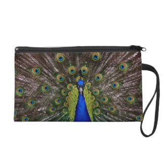 Proud Peacock accessory bags