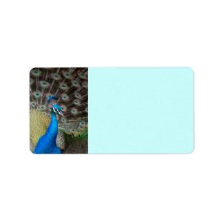 proud peacock address label