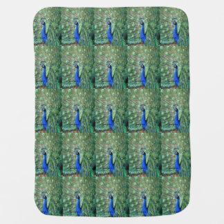 Proud Peacock Baby Blanket