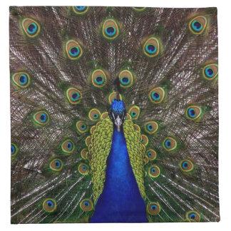 Proud Peacock cloth napkins