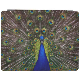 Proud Peacock device covers iPad Cover