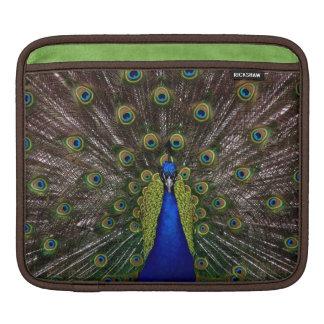 Proud Peacock iPad sleeve
