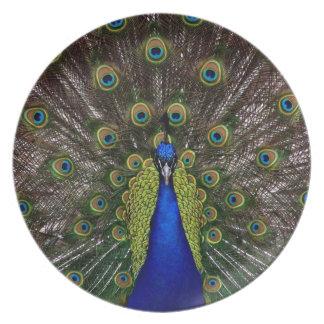 Proud Peacock plate