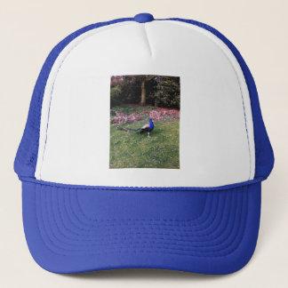 Proud Peacock Trucker Hat