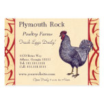 Proud Plymouth Rock Rooster Poultry Farm Pack Of Chubby Business Cards