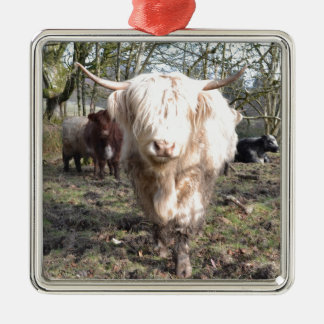 Proud to be Scottish Christmas Ornament