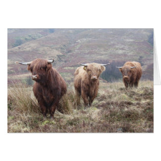 Proud to be Scottish! Greeting Card