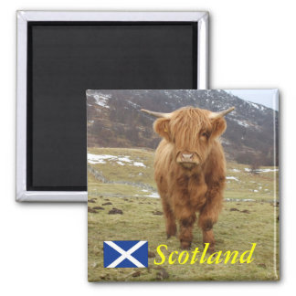 Proud to be Scottish! Square Magnet