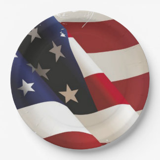 Proudly Wave Veterans Day Party Paper Plates
