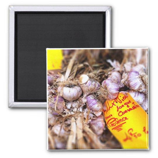 Provence Fresh Purple Garlic Magnet