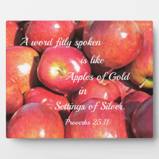Proverbs 25:11 A word fitly spoken... Display Plaque