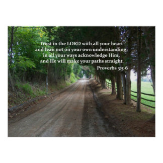 Proverbs 3:5-6 Christian Bible Verse Poster