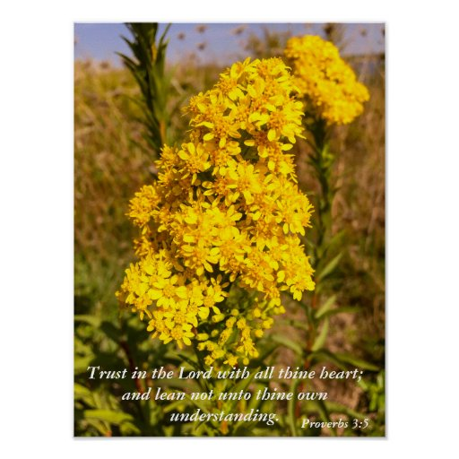 Proverbs 3:5 Bible verse poster