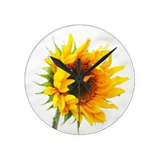 Provincetown Sunflower Round Clock