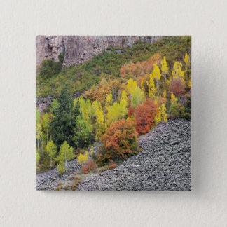 Provo River and aspen trees 10 15 Cm Square Badge