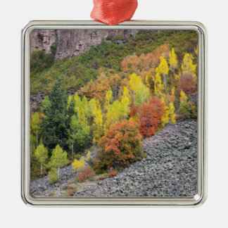 Provo River and aspen trees 10 Christmas Ornament