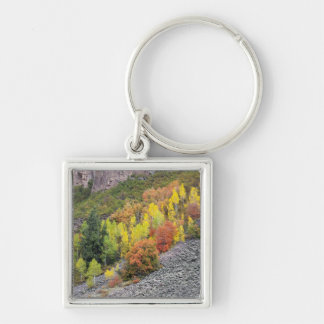 Provo River and aspen trees 10 Key Ring
