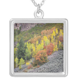 Provo River and aspen trees 10 Silver Plated Necklace