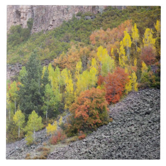 Provo River and aspen trees 10 Tile