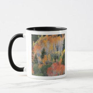Provo River and aspen trees 11 Mug