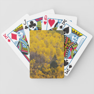 Provo River and aspen trees 12 Bicycle Playing Cards