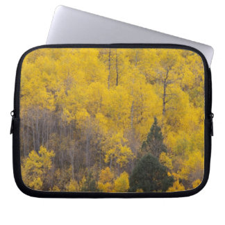 Provo River and aspen trees 12 Laptop Sleeve