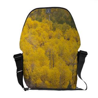 Provo River and aspen trees 12 Messenger Bag