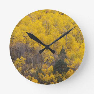 Provo River and aspen trees 12 Round Clock