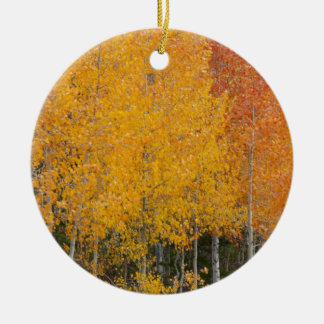 Provo River and aspen trees 13 Christmas Ornament