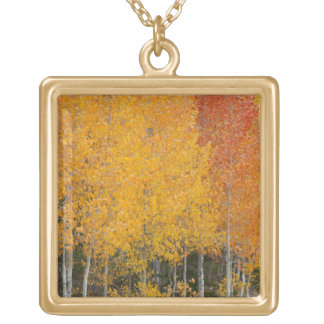 Provo River and aspen trees 13 Gold Plated Necklace