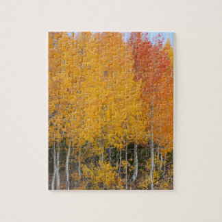 Provo River and aspen trees 13 Jigsaw Puzzle