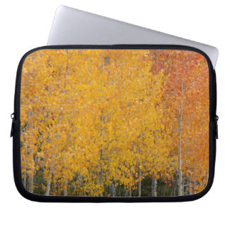 Provo River and aspen trees 13 Laptop Sleeve
