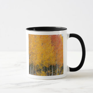 Provo River and aspen trees 13 Mug