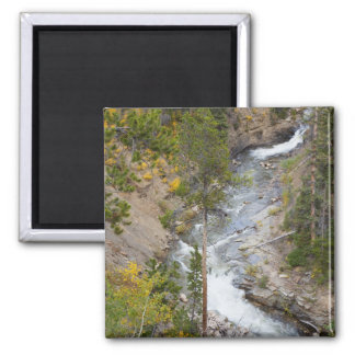 Provo River and aspen trees 14 Magnet