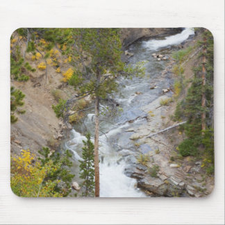 Provo River and aspen trees 14 Mouse Mat