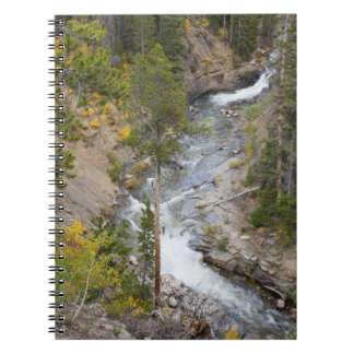 Provo River and aspen trees 14 Notebooks