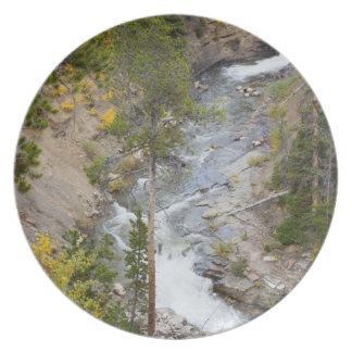 Provo River and aspen trees 14 Plate