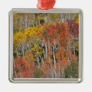 Provo River and aspen trees 15 Christmas Ornament