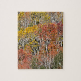 Provo River and aspen trees 15 Jigsaw Puzzle