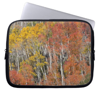 Provo River and aspen trees 15 Laptop Sleeve