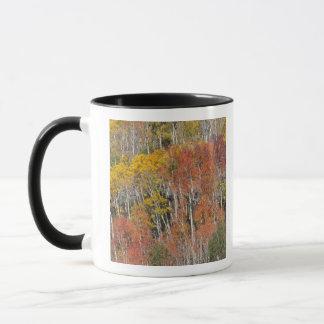 Provo River and aspen trees 15 Mug