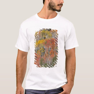 Provo River and aspen trees 15 T-Shirt