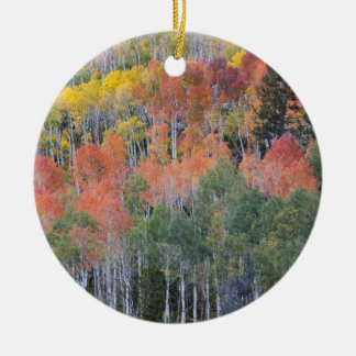 Provo River and aspen trees 16 Christmas Ornament