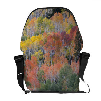 Provo River and aspen trees 16 Courier Bag