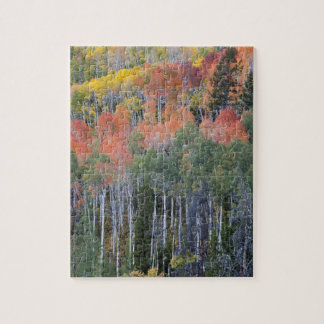 Provo River and aspen trees 16 Jigsaw Puzzle
