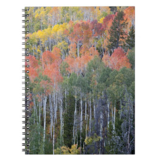 Provo River and aspen trees 16 Spiral Notebook