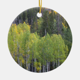 Provo River and aspen trees 2 Christmas Ornament