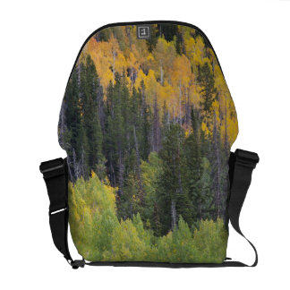 Provo River and aspen trees 2 Courier Bag