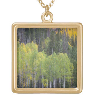 Provo River and aspen trees 2 Gold Plated Necklace