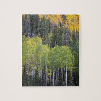 Provo River and aspen trees 2 Jigsaw Puzzle